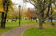 پروژه اتوکد پارک شهری